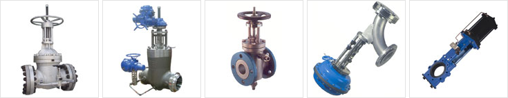 Options and Accessories - Globe Valve